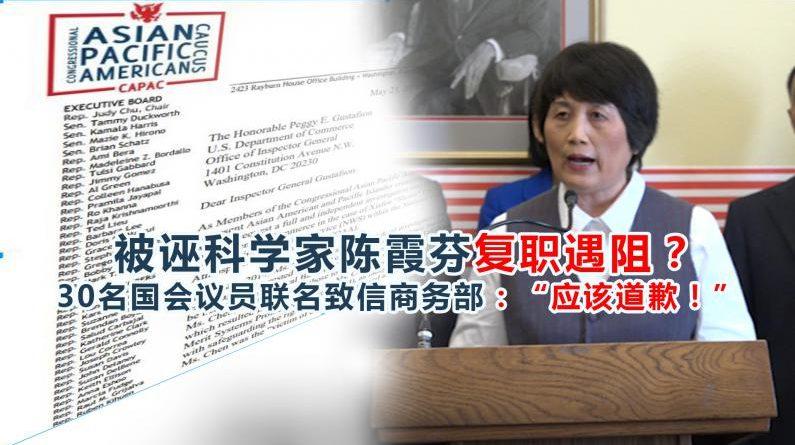 支援陈霞芬反对种族歧视