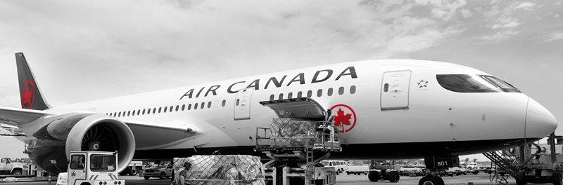 尽管有边境限制,3月到8月仍有140万人乘飞机入境加拿大